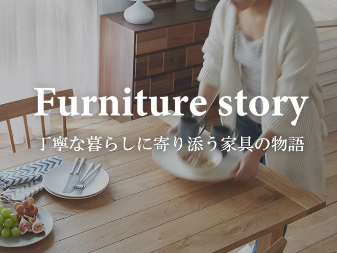 Furniture_Story